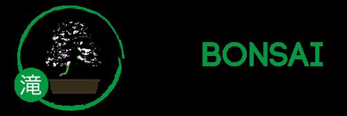 Taki Bonsai